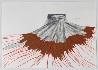Amanda Lechner Works on Paper: 2009-2010 Graphite,Gouache on Paper