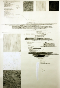 Anne Gilman Observations, errors, + corrections pencil, ink, paint, graphite on paper