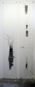 Anne Gilman Multi-panel Scrolls Pencil on medical paper