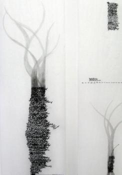 Anne Gilman Multi-panel Scrolls pencil on medical paper