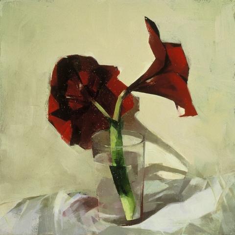 STILL LIFE Red amaryllis