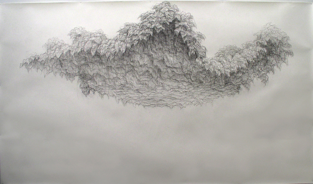 Gina Ruggeri Drawings Graphite on paper