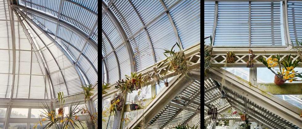Reynold Greenhouse, Winston Salem, NC<br/>