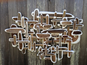 sculpture/installation Wood/Acrylic