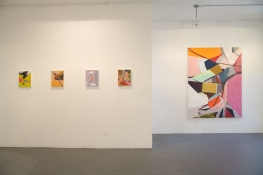 Lisa  Hamilton Exhibition images