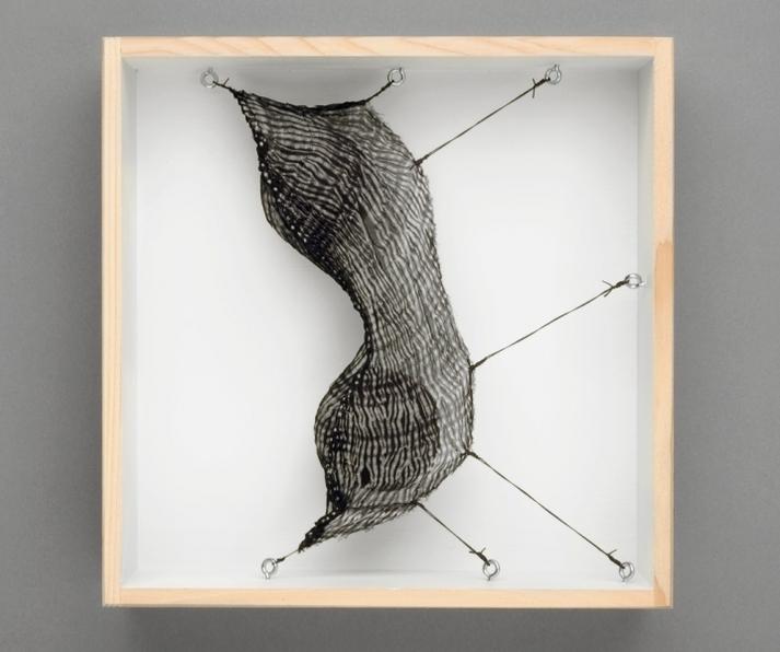 Mo Kelman Recent Work shibori dyed and shaped silk, black walnut hulls, wooden box