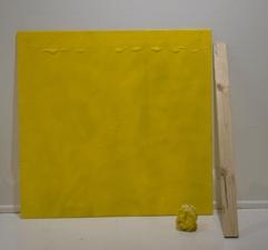 Sara Hubbs AS IS industrial wax, heat, spray paint on plexi-glass
