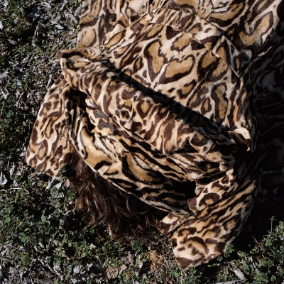 susi brister menagerie archival pigment print on hahnemuehle photo rag