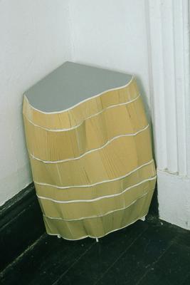 Tamara Zahaykevich Leg-cellent Foam board
