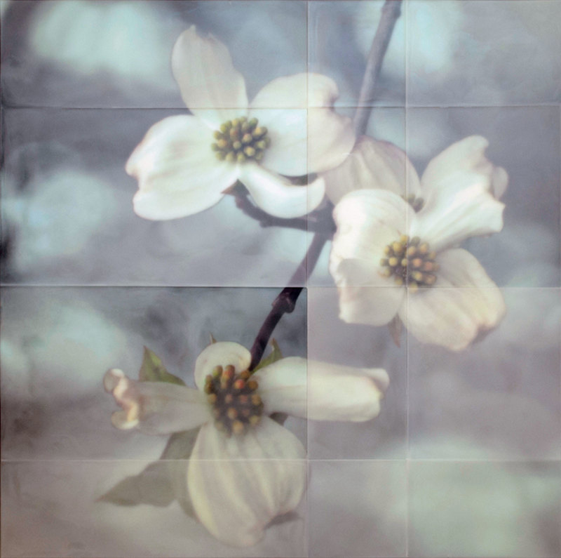 Tom Brydelsky florals Encaustic and collage on wood.