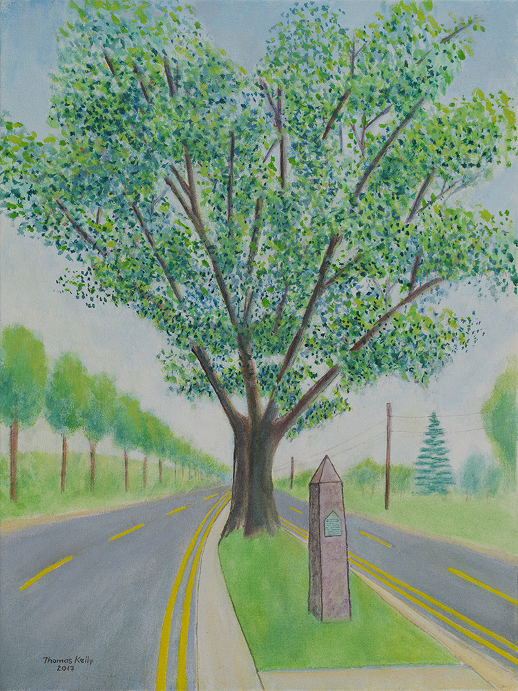 Commissioned Paintings The Big Tree Quakerbridge Road